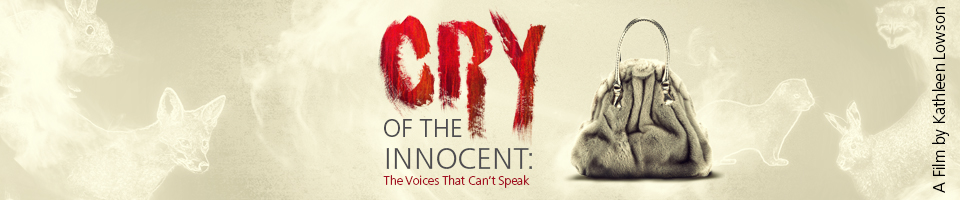 CRY OF THE INNOCENT New Film Poster Banner