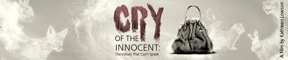 CRY OF THE INNOCENT: The Voices That Can't Speak